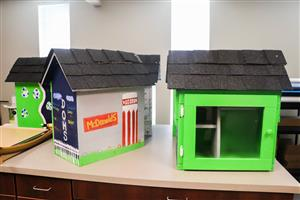 little libraries built for mcdonalds