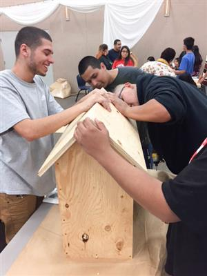 students building a little library